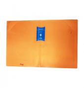 doc-holder-guppy---fluoro-orange---5055.png